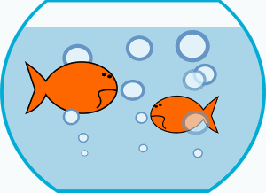 No to the goldfish bowl , illustration showing unhappy fish