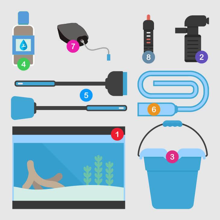 Aquarium Equipment infography