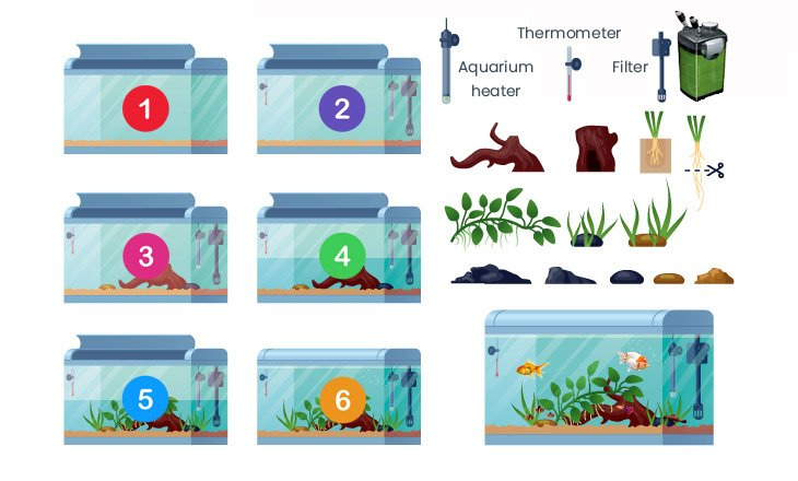 How to set up a fish tank: infographic